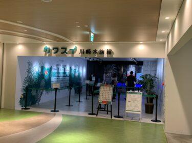 都市型水族館「川崎水族館(カワスイ)」を訪問